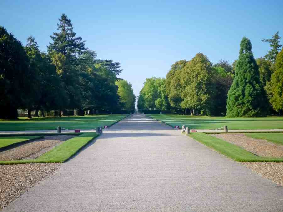 chateau-cheverny-loire-moulinsart-allee