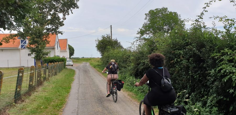 Balade à vélo sur le réseau points noeuds en Flandre