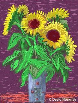 Tournesols dessinés par David Hockney sur iPad