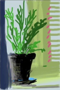 Fleurs fraîches, Untitled, 11 June 2009, iPhone drawing by David Hockney
