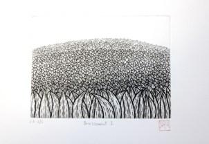 OKAMOTO Hiroko Bruissement I gravure (2/5) 32x42 cm