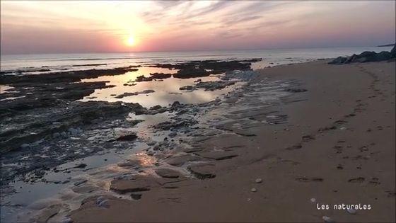 Soleil couchant sur l'île d'oleron