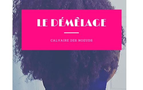 le-demelage-banner.png