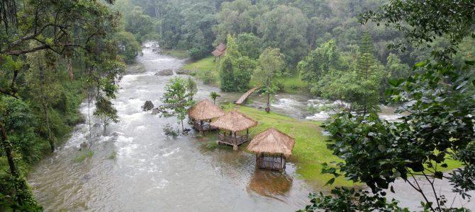 Laos – Jour 8 – le plateau des Bolovens