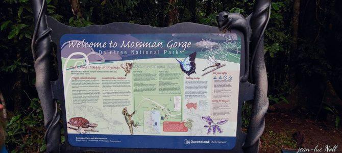 Australie – Queensland – Mossman Gorge