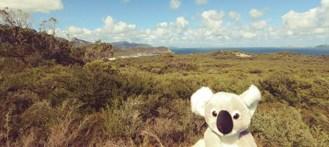 Australie – Victoria – 2 jours à Wilson Promotory