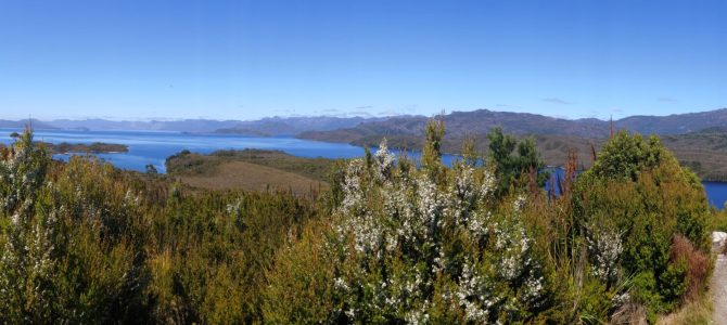 Australie – Tasmanie – Southwest National Park