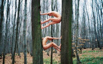 Comment vivre son magnétisme sans finir ermite au fond des bois ?