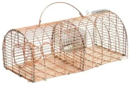piège à souris non mortel