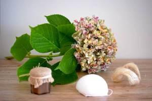 Produits biologiques et naturels