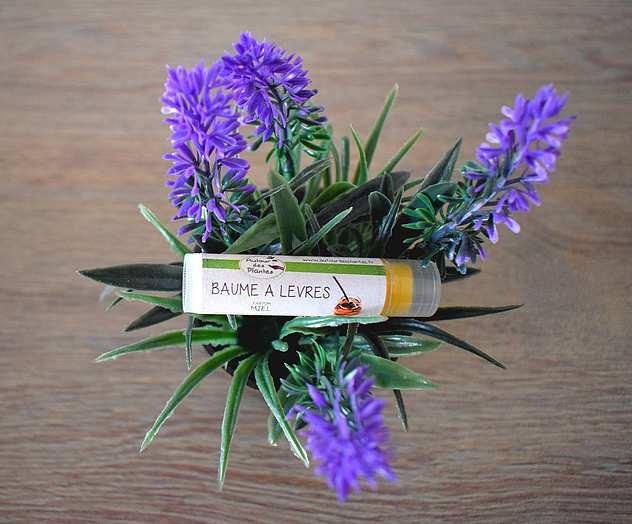Autour des Plantes : Baume à lèvres au miel