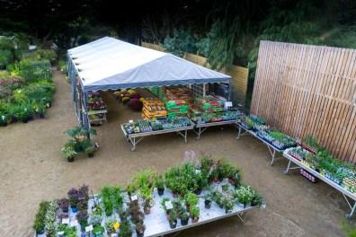Pépinière Le Sommer Jardin à Sarzeau