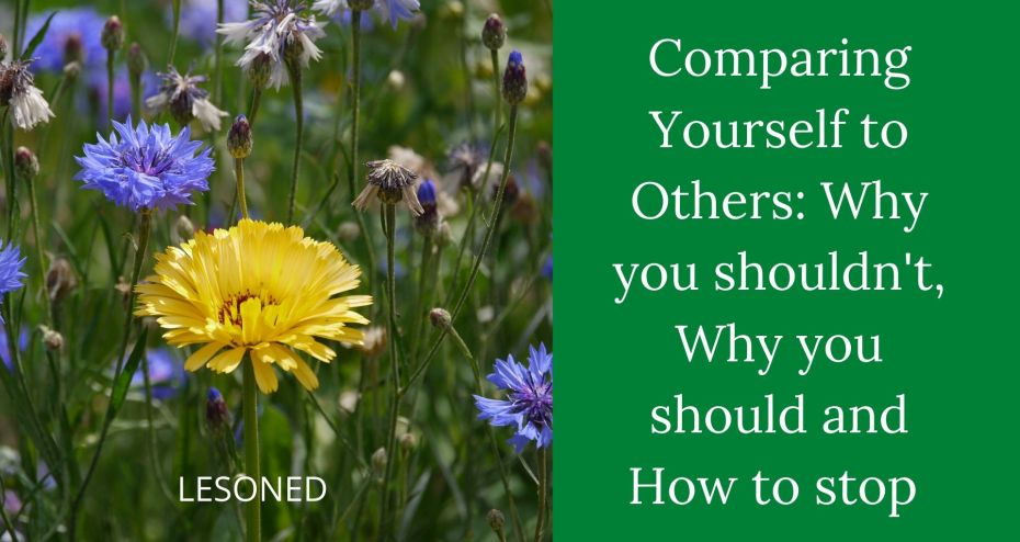 Comparing Yourself to Others: Why you shouldn't, Why you should and How to stop