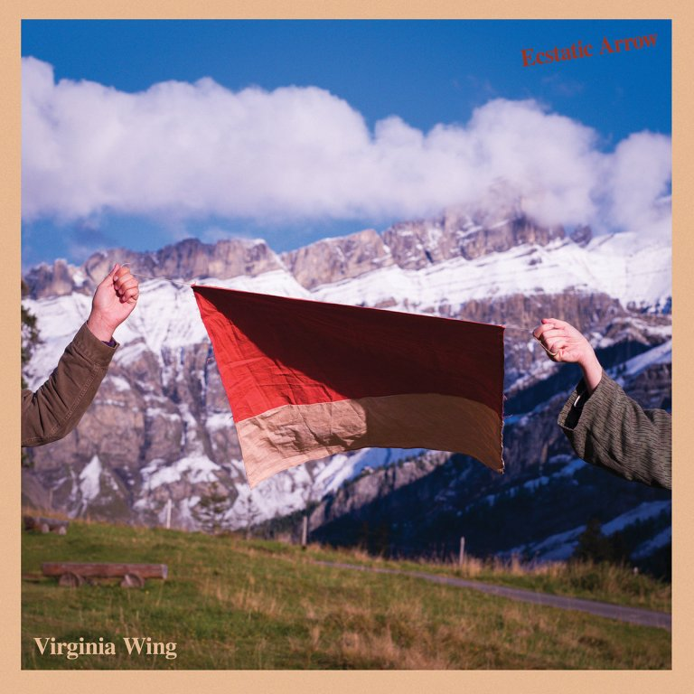 Cover Virginia Wing - The Second Shift