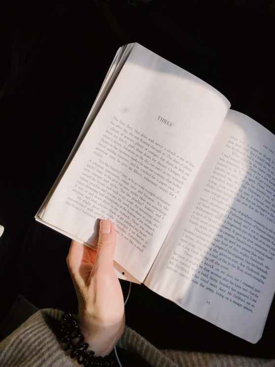 person holding novel book