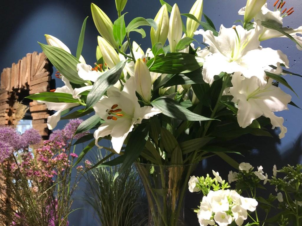 Coccinelle Fleuriste Lannion