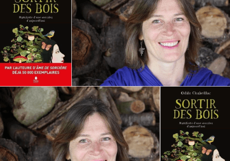 PDT-2020-Odile_Chabrillac-Sortir_des_bois. Couverture