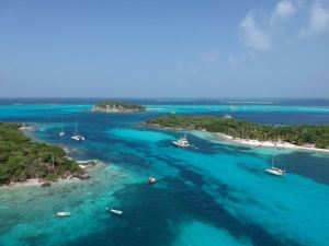 Petit Bateau, Petit Rameau, Baradal, le récif Horseshoe Reef