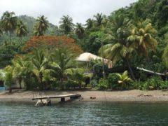 Paradis sur terre : belle maison entourée de cocotier donnant sur la plage avec un ponton pour bateau