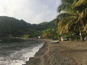 La plage de Cumberland cocotier, bateau sur la plage