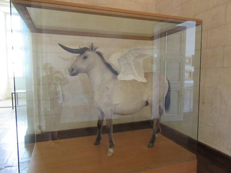 """Pégase - Licorne"" : fascinant ?"