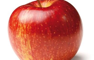 Les 12 fruits et légumes contenant le plus de pesticides