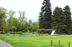 Jardin botanique Genève