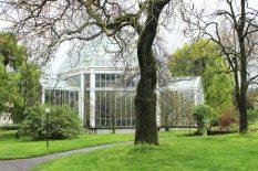 Jardin-botanique-Geneve-5