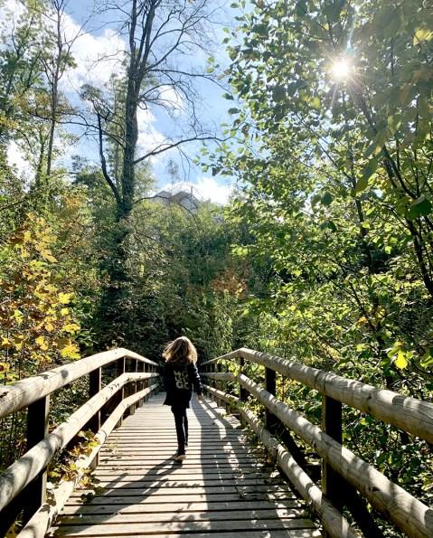Petit pont de bois au dessus de la Versoix