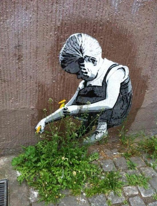 tag mur fleurs nature écologie