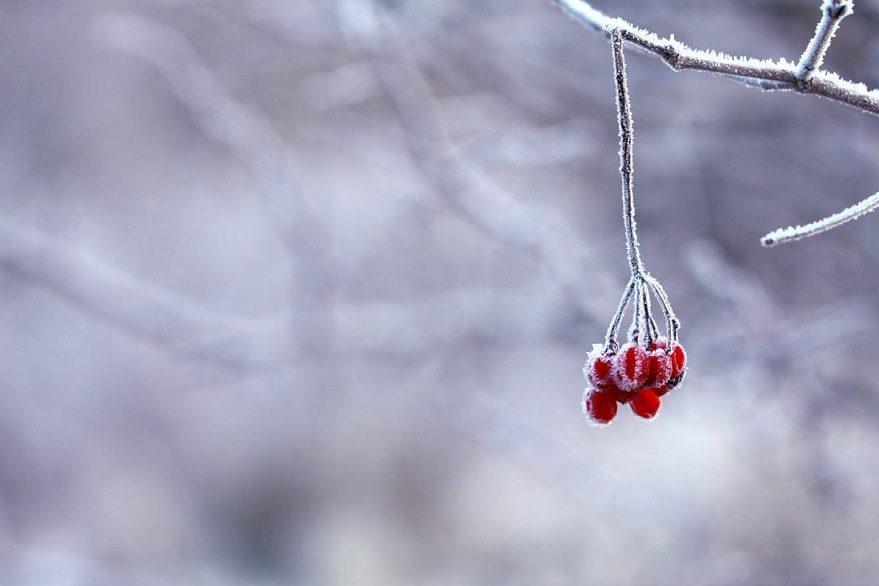 Les 6 réflexes à avoir pour passer l'hiver en bonne santé !
