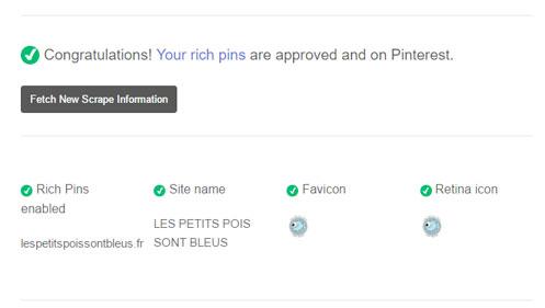 validation des épingles enrichies sur Pinterest