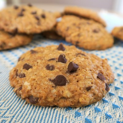 cookies flocons d'avoine les plaisirs sains