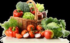 """Résultat de recherche d'images pour """"légumes bio"""""""
