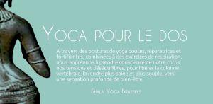 Yoga Pour le Dos avec Elena Ferrer @ Shala Yoga Brussels | Elsene | Brussels Hoofdstedelijk Gewest | Belgium