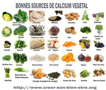 calcium végétal diversifier bébé