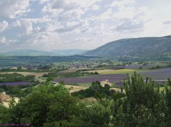 La route de la Lavande ,l'Abbaye de Sénanque