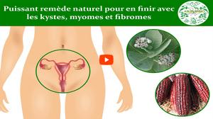 Fibrome utérin traitement naturel