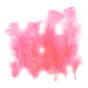 plumes-roses-attrape-reves