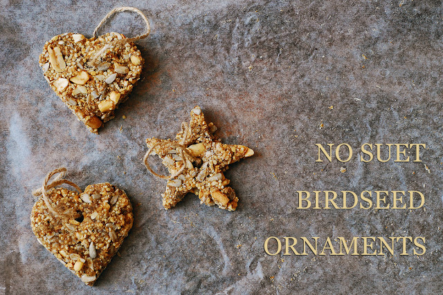 Image and tutorial from http://sas-does.blogspot.co.uk/2013/01/no-suet-birdseed-ornaments.html