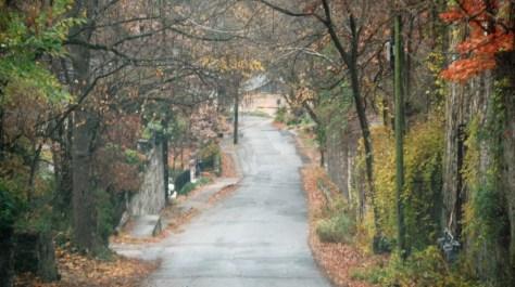 cropped-Eureka-Springs-AR.jpg