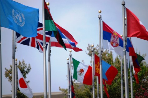 Over 60 flags fly at the Keeling-Puri Peace Plaza in Rockford, IL