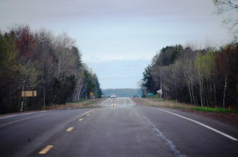 Birch forests line the highway on US Route 2 in eastern Wisconsin