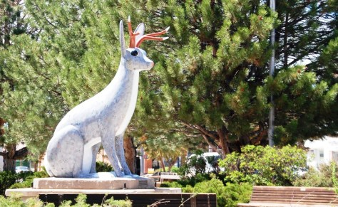 Another Jackalope is spotted in Douglas