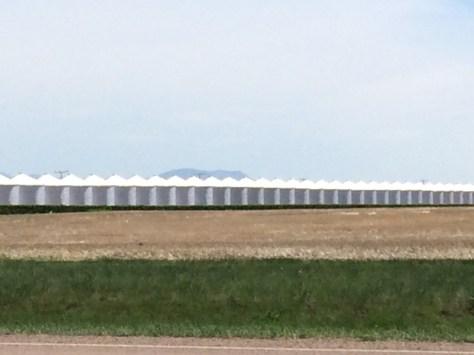 A line of grain silos in Kremlin, MT