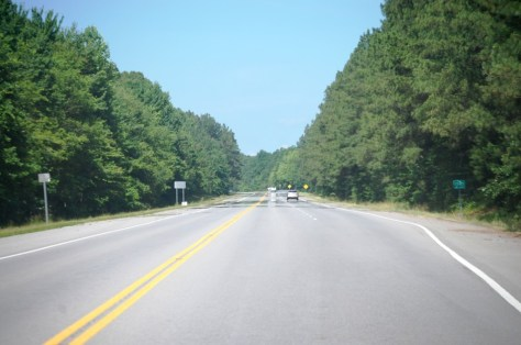 US 79 south of Dover, TN -- pine-walled highway