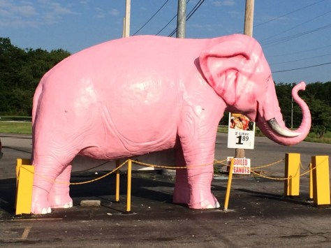Pink Elephant in front of a convenience store in Guthrie, KY