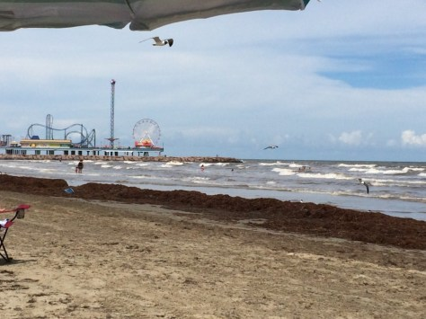 A beach shot with Pleasure Pier in the Distance