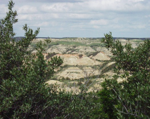 Some of the scenic and colorful hills of Theodore Roosevelt National Park