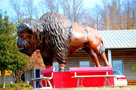 Bison statue outside of Loretta Lynn's Restaurant in Buffalo, Tennessee
